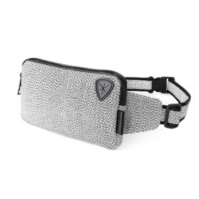Anti-theft waist bag